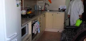 تطهير الغرف من الصراصير - أين يمكن التقدم بطلب للعلاج؟