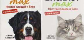 يعني Blohnet للقطط والكلاب: استعراض وتعليمات للاستخدام