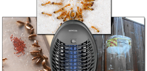 استعراض الفخاخ الفعالة للحشرات الطائرة والزاحفة