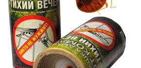 استخدام قنابل الدخان المبيدات الحشرية لتدمير الحشرات في الغرفة