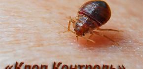 مكافحة الحشرات تحكم Bedbug وميزات عملها